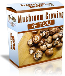 how to grow mushrooms at home course