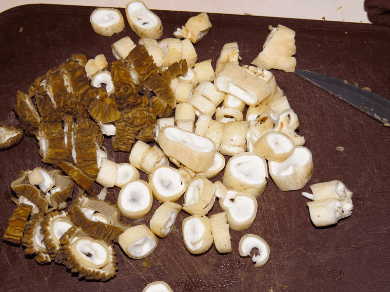 sliced morels