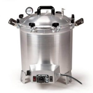 stoveless pressure cooker