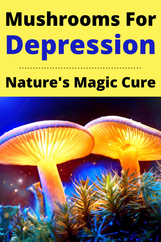 Mushrooms For Depression | Natures Magic Cure