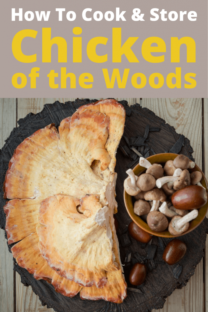How To Cook & Store Chicken of the Woods