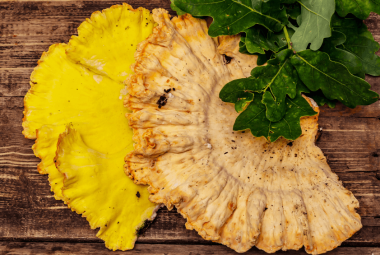 How To Cook And Store Chicken Of The Woods