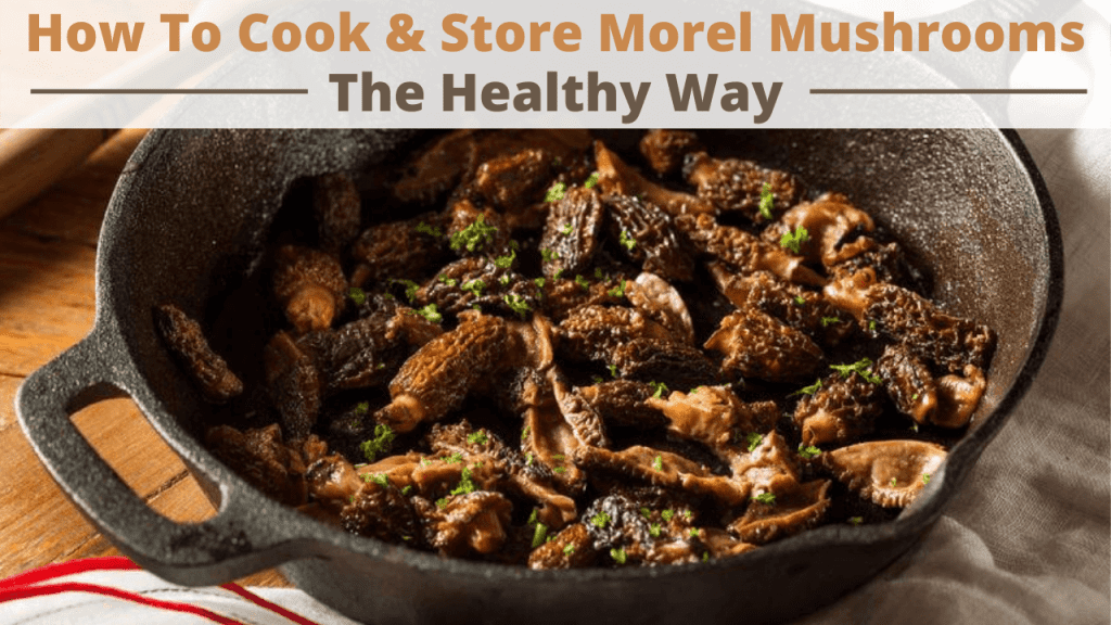 how to cook and store morel mushrooms