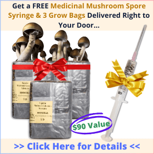 medicinal mushroom grow bags and spore syringe